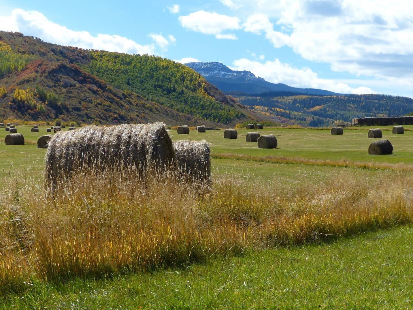 Hay Bales on green pasture with mountain in the background